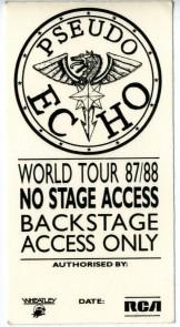 pseudo-echo-pass.jpg